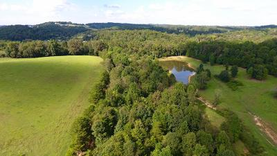 Residential Lots & Land For Sale: 604 County Road 350 Parcel #1