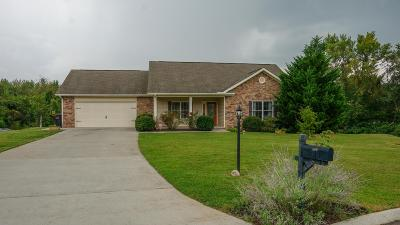 Single Family Home For Sale: 589 Dixie Meadows Drive