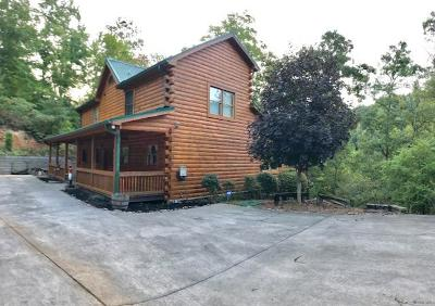 Campbell County Single Family Home For Sale: 160 Nona Way Lane
