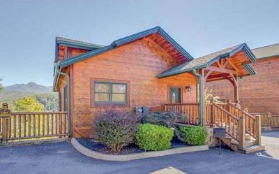 Gatlinburg Single Family Home For Sale: 652 Park Vista Way