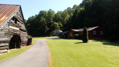 Gatlinburg Single Family Home For Sale: 420 Cartertown Rd