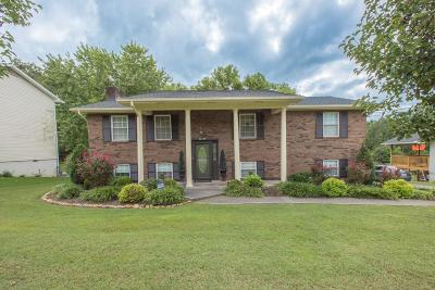 Knoxville Single Family Home For Sale: 7921 Hallsdale Rd