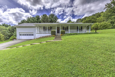 Clinton Single Family Home For Sale: 1356 Laurel Rd