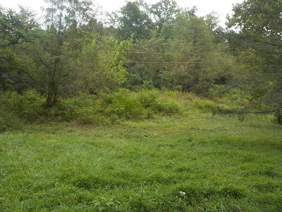 Bean Station Residential Lots & Land For Sale: 0000 Rocky Springs Road