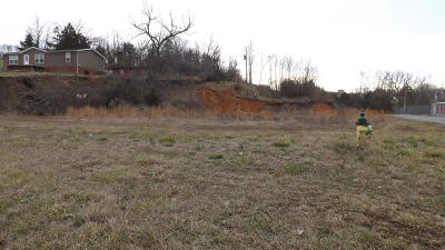 Tazewell Residential Lots & Land For Sale: 115 Briar Rd