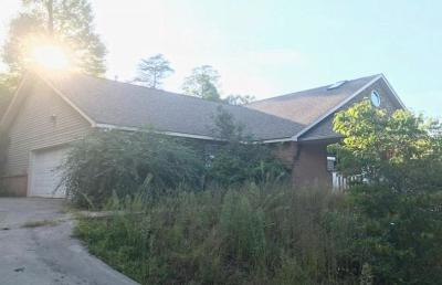 Blount County, Knox County Single Family Home For Sale: 8125 Laurel Falls Lane