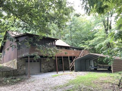 Caryville, Jacksboro, Lafollette, Rocky Top, Speedwell, Maynardville, Andersonville Single Family Home For Sale: 131 Point Lane