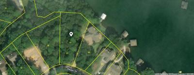 Blount County, Knox County, Loudon County, Monroe County Residential Lots & Land For Sale: 138 Depew Drive