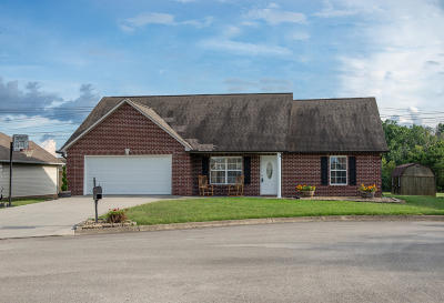 Corryton Single Family Home For Sale: 8404 Reality Lane