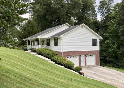 Andersonville, Maynardville, Norris Single Family Home For Sale: 516 Big Valley Rd