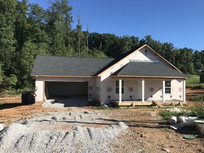 Maynardville Single Family Home For Sale: 360 Covenant Lane