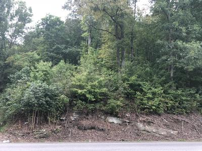 Residential Lots & Land For Sale: Highway 25w S
