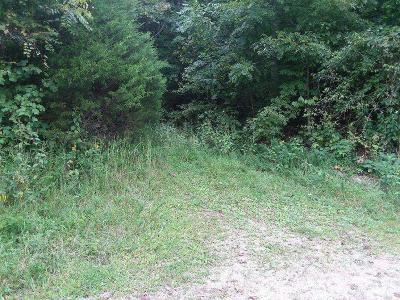Tazewell Residential Lots & Land For Sale: Lot 2 Long Beard Lane