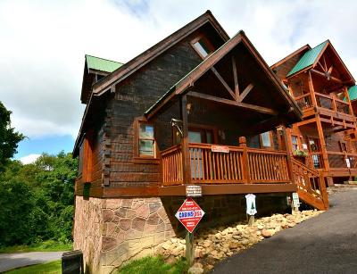 Gatlinburg Single Family Home For Sale: 1251 Bear Cub Way