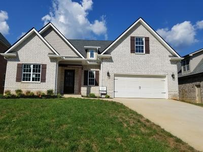 Knoxville Single Family Home For Sale: 1308 Feather Rose Lane