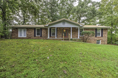 Rocky Top Single Family Home For Sale: 111 Cumberland View