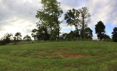 Residential Lots & Land For Sale: 212 Majestic View Drive Drive