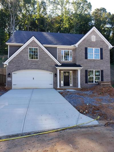Knoxville Single Family Home For Sale: 10738 Bald Cypress