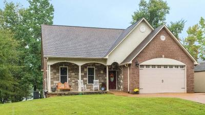 Meigs County, Rhea County, Roane County Single Family Home For Sale: 571 Culvahouse Lane
