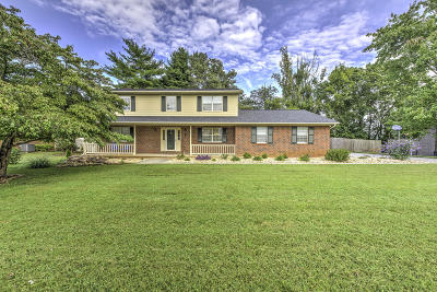 Knoxville Single Family Home For Sale: 12641 Pony Express Drive