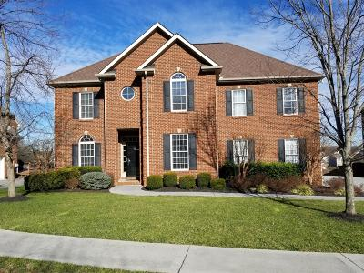 Knoxville Single Family Home For Sale: 9215 Mira Vista Lane