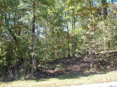 Residential Lots & Land For Sale: 435 High St