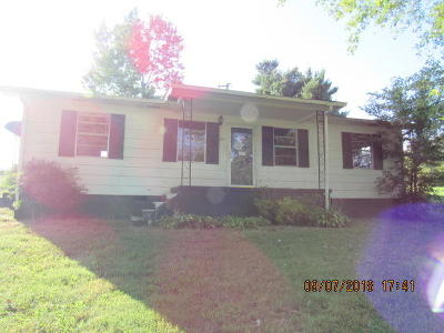 Clinton Single Family Home For Sale: 391 Peach Orchard Rd