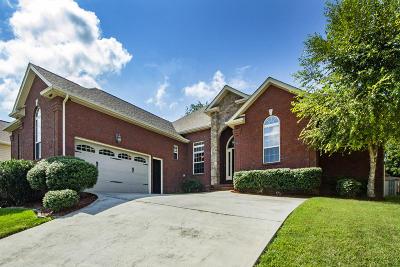 Knoxville Single Family Home For Sale: 6013 Stratford Park Blvd