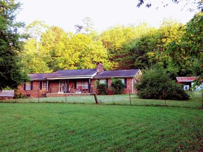 Knoxville Single Family Home For Sale: 4918 Brown Gap Rd