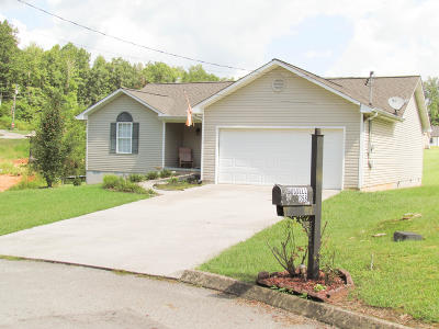 Maynardville Single Family Home For Sale: 358 Covenant Lane