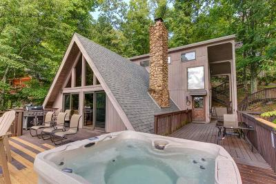 Gatlinburg Single Family Home For Sale: 943 Scenic Tr
