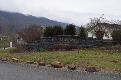 Lone Mountain Shores Residential Lots & Land For Sale: 642 Chimney Rock Road Rd