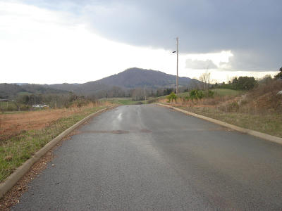 Tazewell Residential Lots & Land For Sale: L 21 Elaine Drive