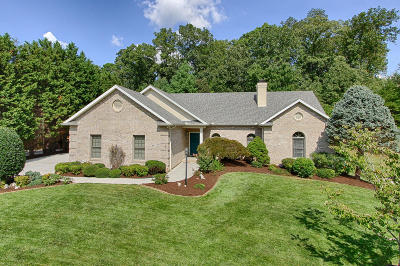 Knoxville Single Family Home For Sale: 858 Oconnell Drive