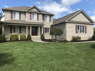 Sevierville Single Family Home For Sale: 655 Bryce View Lane
