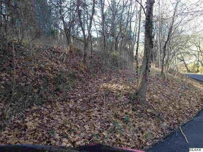 Sevierville Residential Lots & Land For Sale: Birds Creek Rd