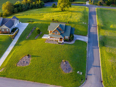 Mooresburg Single Family Home For Sale: 1113 Legacy Bay Drive