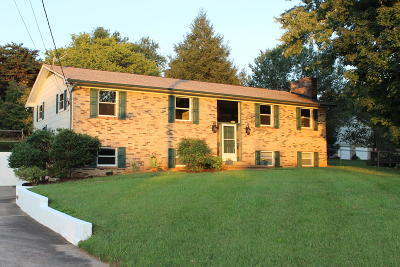 Knoxville Single Family Home For Sale: 7904 Hallsdale Rd
