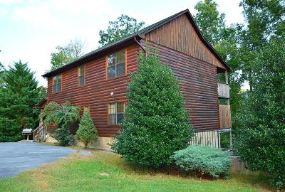 Sevierville Single Family Home For Sale: 1503 Boo Boos Way