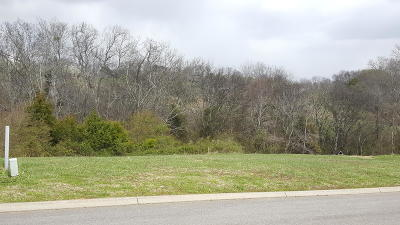 Sevier County Residential Lots & Land For Sale: Lot 99 Mississippi Ave
