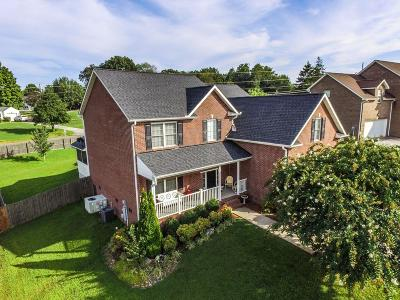 Knoxville TN Single Family Home For Sale: $262,500