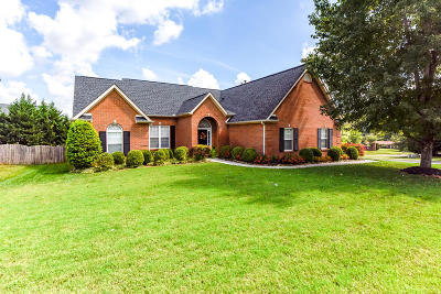 Knoxville Single Family Home For Sale: 13030 Peach View Drive