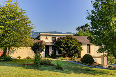 Campbell County Single Family Home For Sale: 299 Thelma Circle