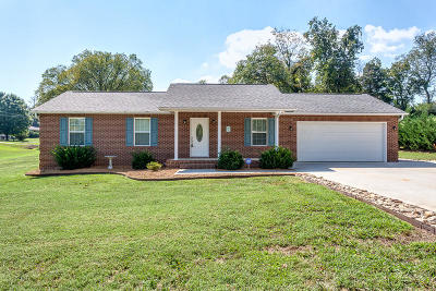 Knoxville Single Family Home For Sale: 2701 Ellison Rd