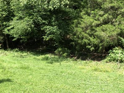 Tazewell TN Residential Lots & Land For Sale: $9,900