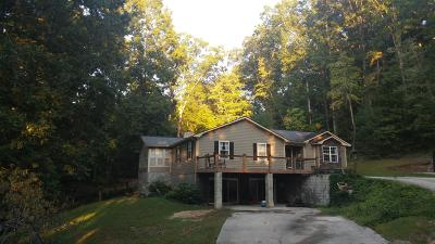 Caryville, Jacksboro, Lafollette, Rocky Top, Speedwell, Maynardville, Andersonville Single Family Home For Sale: 173 Twin Gate Lane