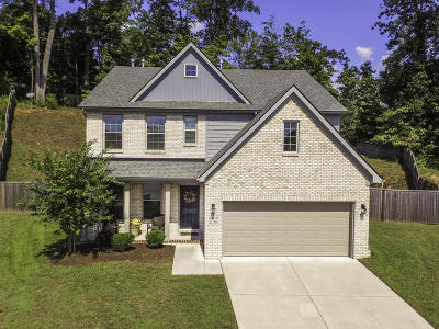 Knoxville Single Family Home For Sale: 3459 Teal Creek Lane