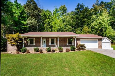 Corryton Single Family Home For Sale: 9825 McElhaney Drive