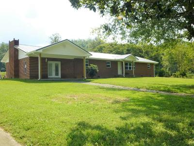 Sevierville Single Family Home For Sale: 5516 Henry Town Rd