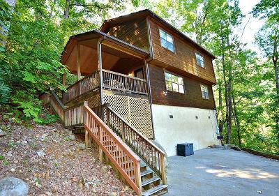 Gatlinburg Single Family Home For Sale: 937 Ski Mountain Rd